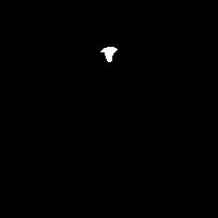 AROWANA SALE